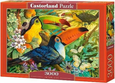 Castorland Interlude Puzzle 3000 pcs